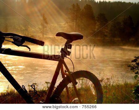 Lakeshore Biking