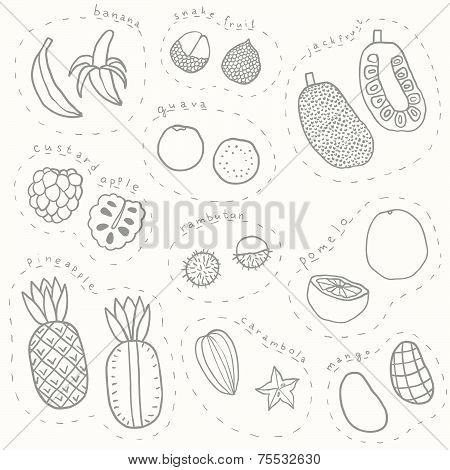 Set of hand drawn sketch tropical fruits part 1