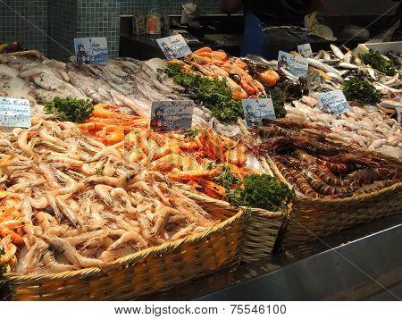 Fresh Shrimp And Calamari