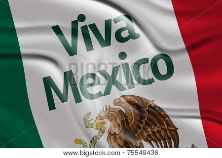 Amazing Flag with Viva Mexico