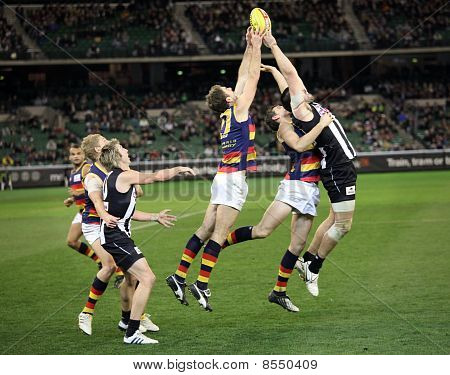 Melbourne - August 21:  Adelaide's Scott Stevens (centre) And Collingwood's Chris Dawes (r) Stretch