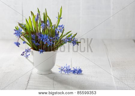 Bouquet of wood squill  (Scilla siberica) flowers  in ceramic cup  against a old wooden plank. Shallow DOF.  Selective focus.