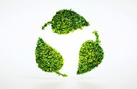 Eco Sustainable Concept.