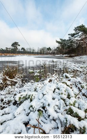 Snow On The Ice Of The Natural Pond.