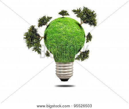 Green Grass Light Bulb Isolated