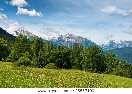 High angle view of grassy meadow and fir trees with snow-capped mountain peaks in backdrop beneath blue sky and whispy white clouds