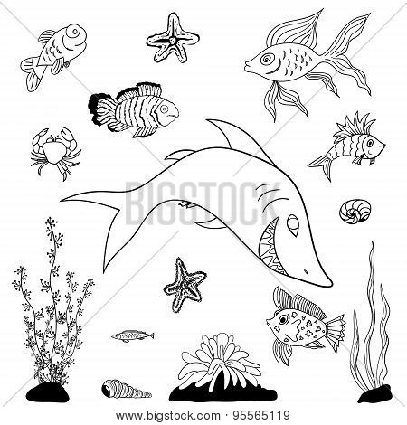 Fishes Coloring Pages Vector
