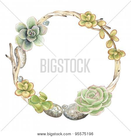 Wreath of Succulents, twigs and stones, vector watercolor illustration in vintage style.