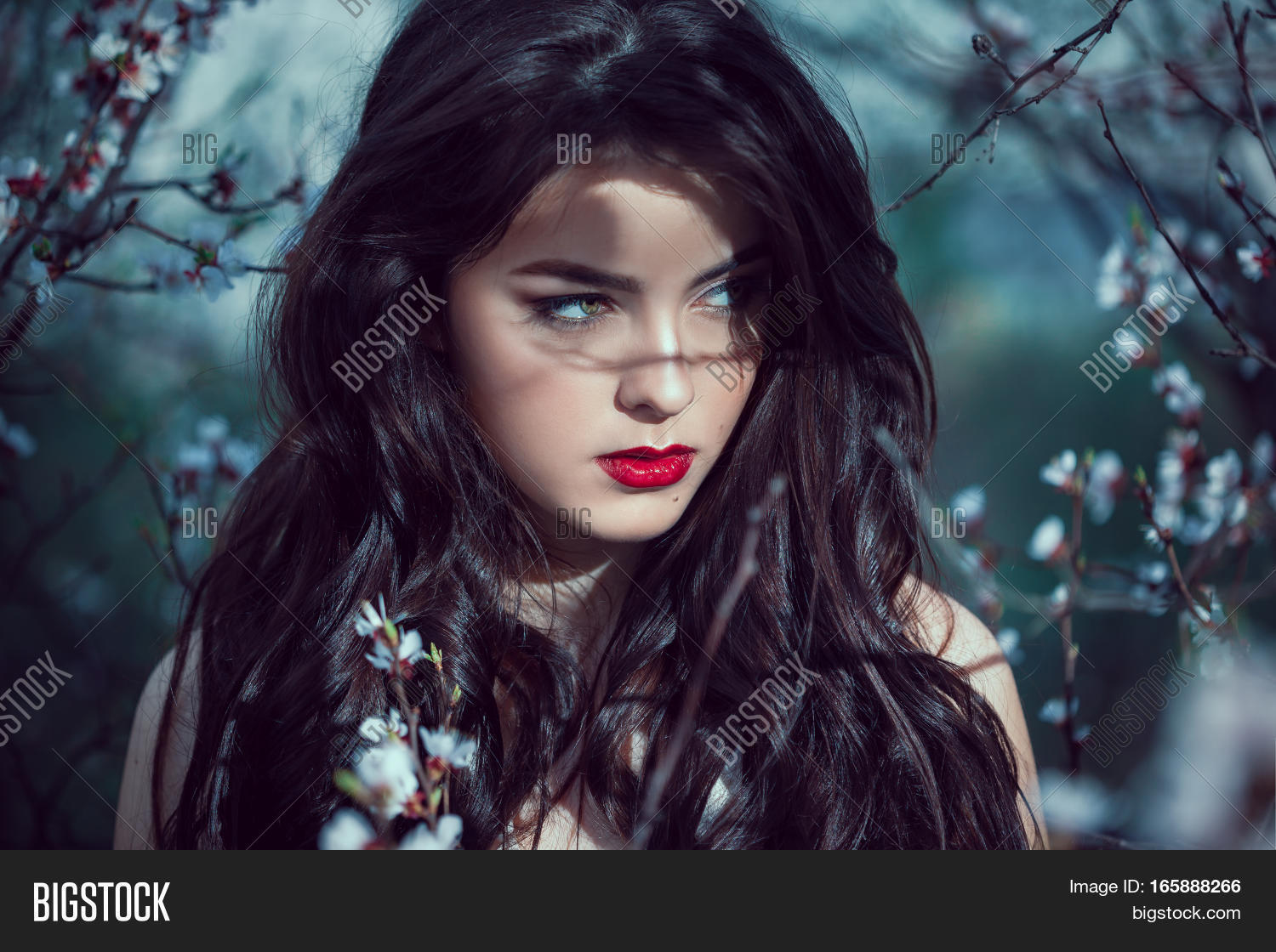 Fashion art mystical spring model image photo bigstock fashion art mystical spring model girl portrait in moonlight night sexy glamour summer beautiful woman izmirmasajfo Image collections