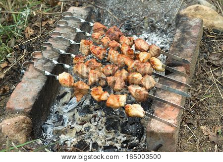 Tasty barbecue preparing outdoor on brazier with hot charcoal closeup