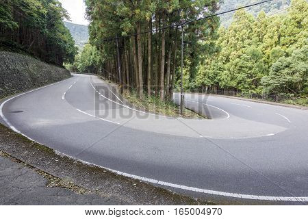 Hairpin bend surrounded by conifer forest in Wakayama, Japan
