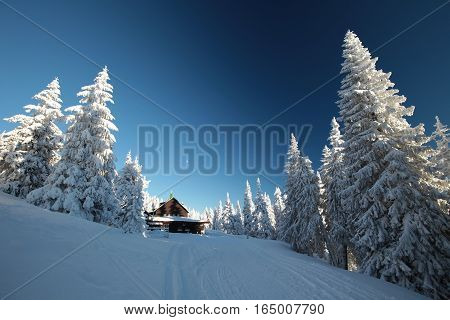 Cottage in the mountains surrounded by winter scenery