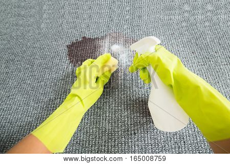 Person Hand Wearing Gloves Spraying Detergent On Grey Carpet To Remove Stain