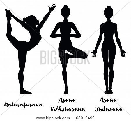 Women silhouette. Lord of the dance yoga pose. Natarajasana. Yoga mountain pose. Tadasana. .Yoga tree pose. Vrikshasana. Vector illustration