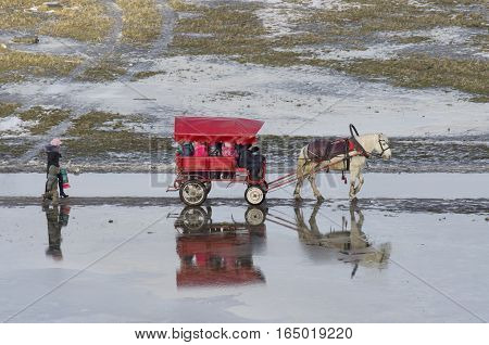 The horse driven carriage the with the kids and they are accompanied by a mother and her child