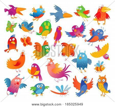 Funny colorful birdies. Vector illustration. Isolated on white background. Set