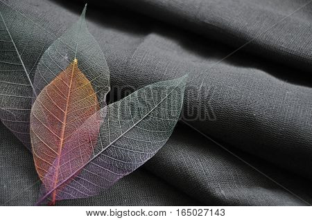 Colorful skeleton leaves in heart shape on dark fabric background