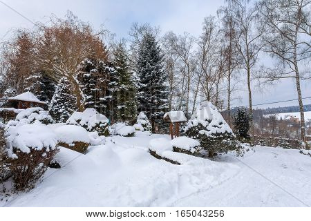 Simple Bird Feeder, Birdhouse In Winter