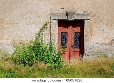 Old wooden door with an ornament in the old wall and overgrown bush and grass.