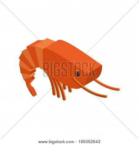Shrimp Isolated. Crustaceans On White Background. Sea animals