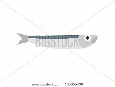Anchovy Isolated. Small Fish On White Background