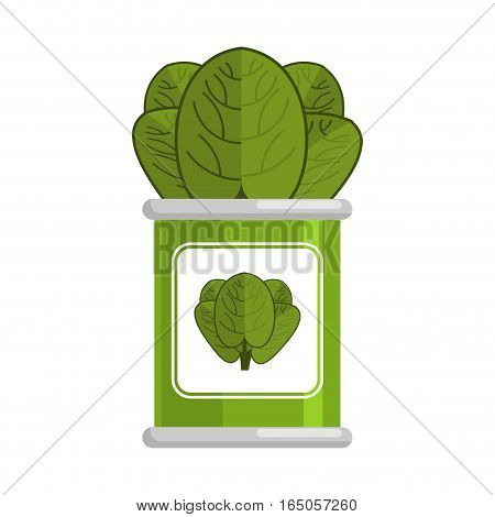 Spinach Tin..vegetarian Food. Green Leaves On White Background
