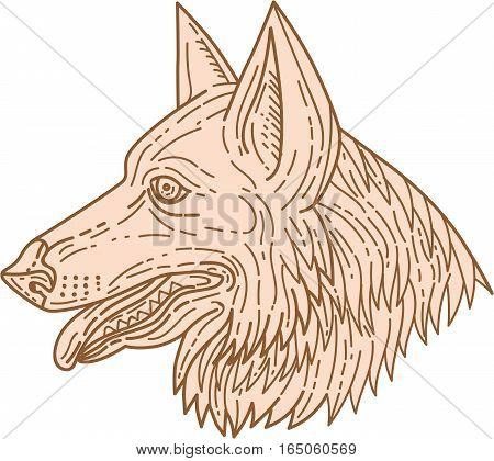 Mono line style illustration of a german shepherd dog head with tongue out viewed from the side set on isolated white background.