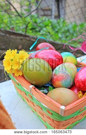 Easter eggs ellow flowers and yclose up