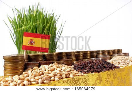 Spain Flag Waving With Stack Of Money Coins And Piles Of Wheat And Rice Seeds