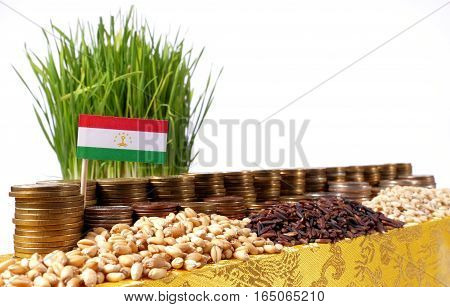 Tajikistan Flag Waving With Stack Of Money Coins And Piles Of Wheat And Rice Seeds