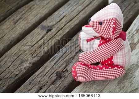 Bear Doll On Wood