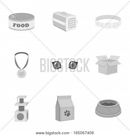 Cat equipment set icons in monochrome style. Big collection of cat equipment vector symbol stock