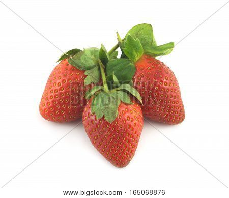 Three ripe appetizing red strawberries with green leaves isolated closeup