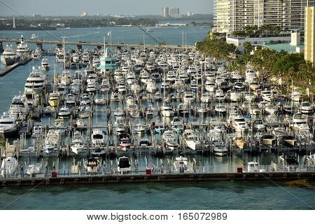 Busy boat marina in Miami Beach Florida