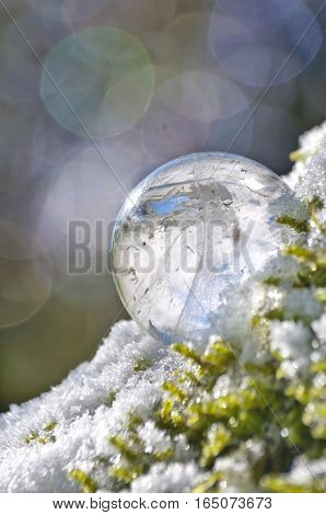 Closeup of quartz crystal in ball shape sitting on snowy mossy branch with colored orbs in background