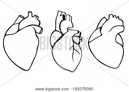 A set of human hearts. Vector illustration
