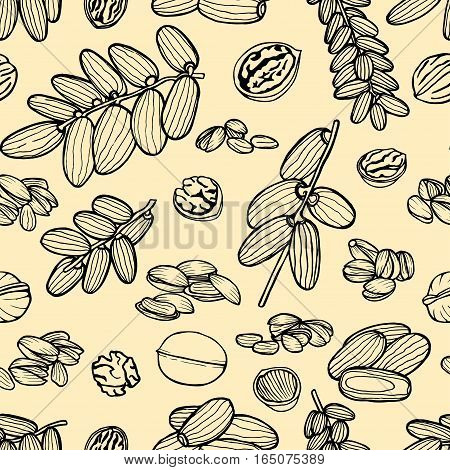 Monochrome Vector seamless pattern sketched nuts in hand drawn style