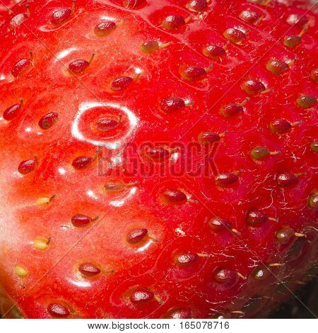 Strawberry Macro image features the red skin and seeds.