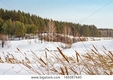Winter landscape on the river. The Separate river ( a tributary of the Ob river ) in Novosibirsk oblast Siberia Russia
