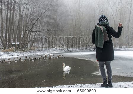 A young woman feeding on a lake swans and ducks Bird feeding in winter 5