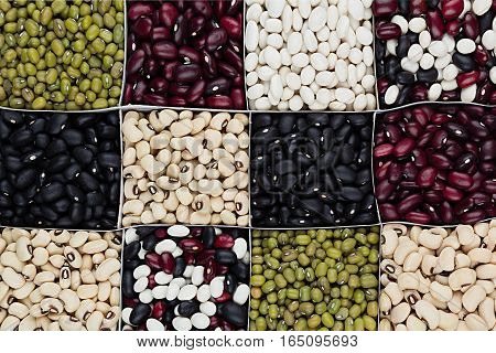 Kidney beans background different kind haricot - red black white mung in square cells closeup top view. Healthy protein food.