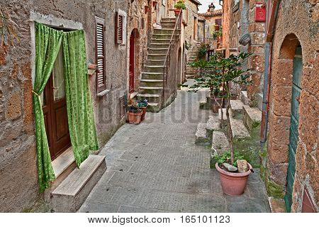 Pitigliano, Grosseto, Tuscany, Italy: picturesque old alley with ancient houses and plants in the medieval town