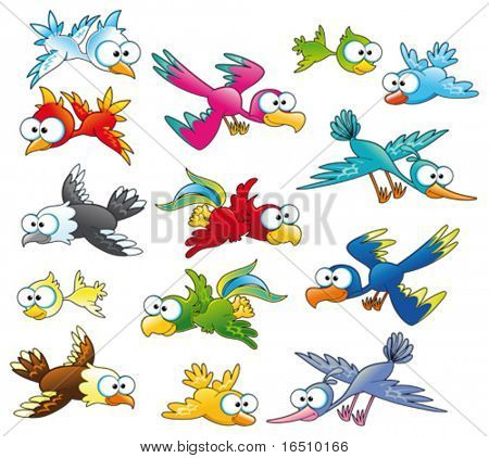 Family of birds.  Funny cartoon and vector characters