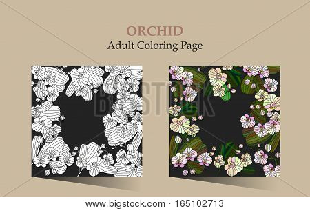 Adult antistress coloring page. Cards with tropic flower - orchid. Can be used for Invitation to the wedding or background.