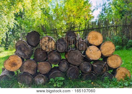 The logs lie on the grass tree trunks lying near the fence on the grass sunny summer day in the country. Felled firewood lying on the grass.