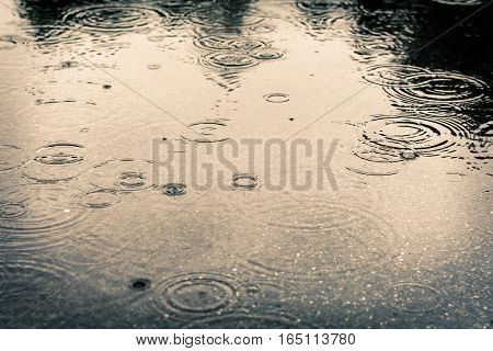 Raindrops in a large puddle. Dirty weather