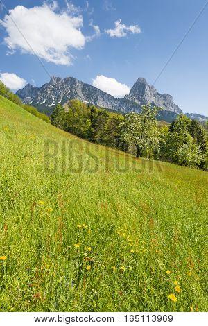 Spring landscape. Spring time in the Alps.