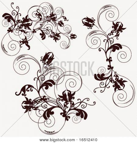 Vektor-Blumenornament isoliert