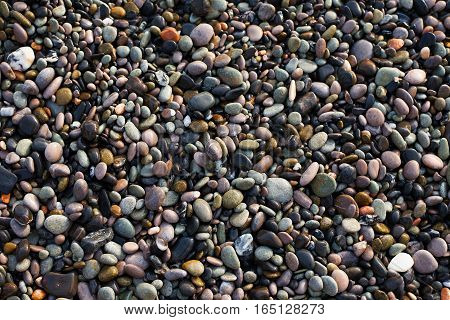 Colorful sea pebbles, can be used as background, concept of sea resort