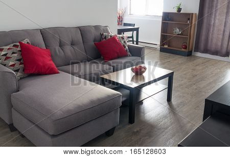 appartment living room interior with couch and cofee table at sunlight